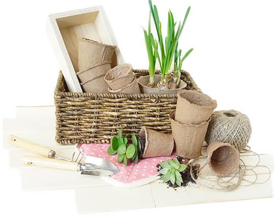 Съвети за дома и градината