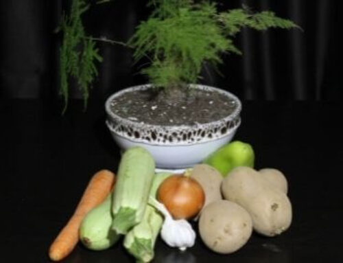 Био средства за защита от вредители
