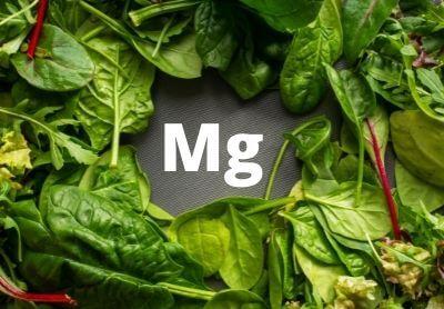 Кои храни са богати на магнезий?